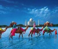 Missione imprenditoriale in India